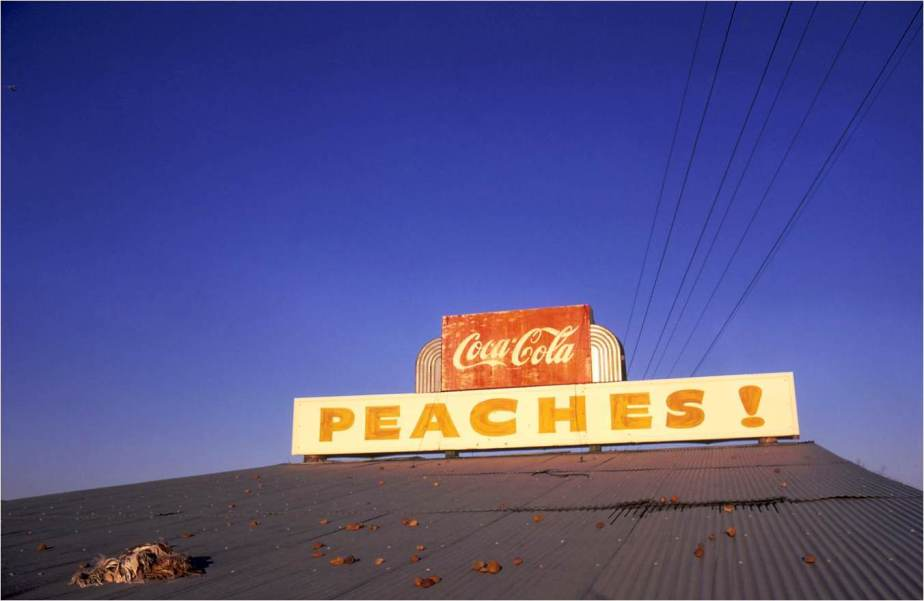 5._Untitled__1971_Eggleston