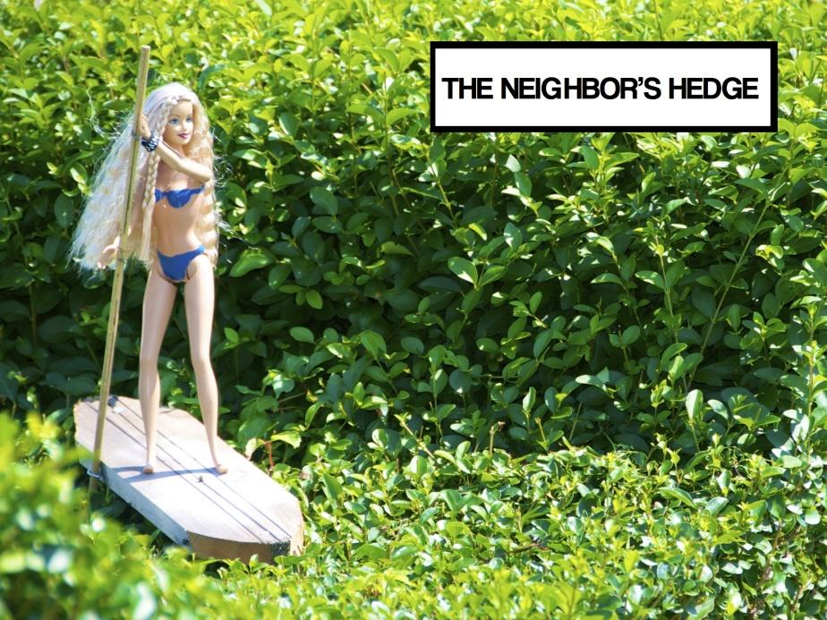 neighbors copy